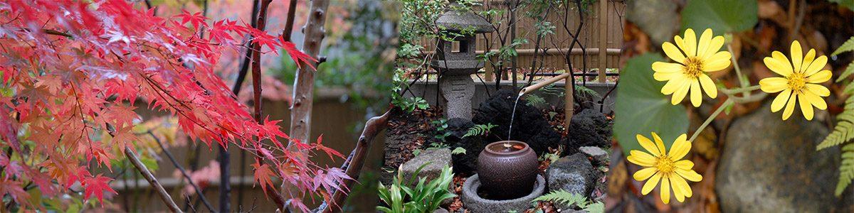 茶室と庭園